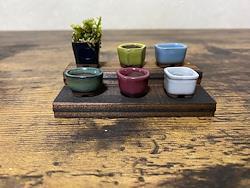 板付 豆盆栽 6点セット  ミニ 盆栽鉢 盆栽鉢