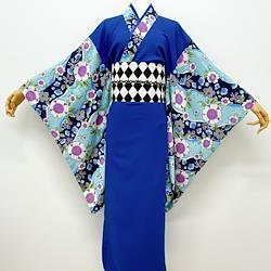 袖柄ロング着物*梅に疋田(瑠璃色)