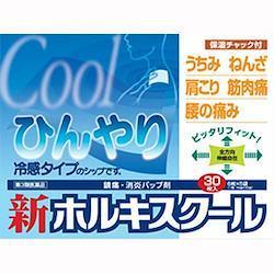 【第3類医薬品】テイコクファルマケア 新ホルキスクール 30枚