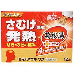 薬王製薬 漢元ハヤオキワン 12包