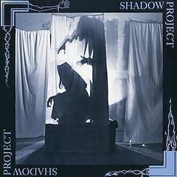 Shadow Project [12 inch Analog]