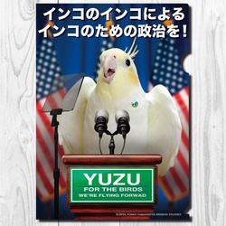A4クリアファイル インコ党 「アメリカ大統領選挙」